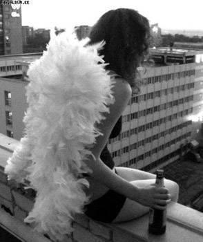 Et un ange passe ..