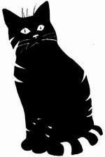 Un 13 .. un chat !