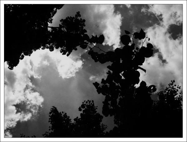 Ciel sombre